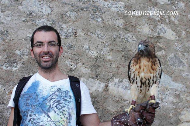 David sujetando al Aguila Cola Roja