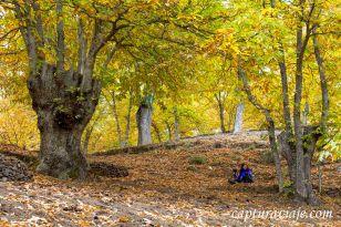 11 - Salida Agafona Valle del Genal - Castaños