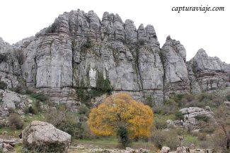 Convivencia en el Torcal de Antequera - M02