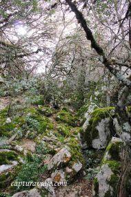 Convivencia en el Torcal de Antequera - M05