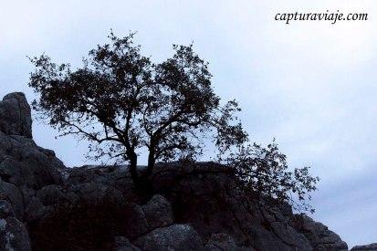 Convivencia en el Torcal de Antequera - Y la luz se fue