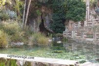 16 - Salida Agafona Valle del Genal - Nacimiento Río Genal - Igualeja