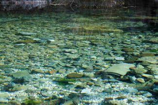 19 - Salida Agafona Valle del Genal - Nacimiento Río Genal - Igualeja