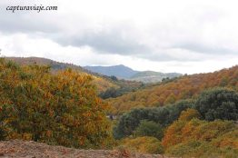 21 - Salida Agafona Valle del Genal - Vistas por Pujerra