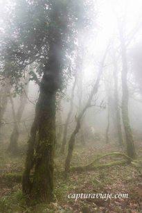 Taller de Fotografía de Paisaje - Parque Natural de los Alcornocales - 03