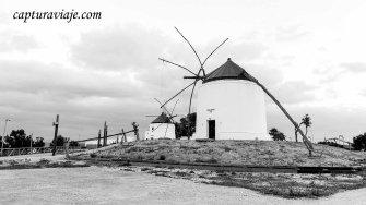 48 - Vejer de la Frontera - Molinos II - D